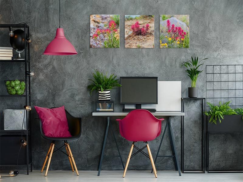 integrating-flowers-into-your-office-design-masof.jpg